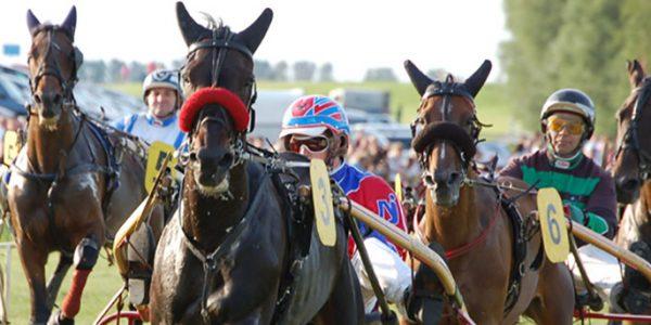 Ponyrennen am Familienrenntag