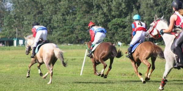 Ponyrennen am Familienrenntag // AUSSCHREIBUNG